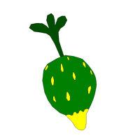 Rooturnip Fruit