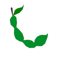 Tara Fruit