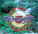 Entheogenic - Flight of the Urubus