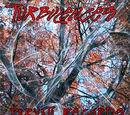 VA - Turbulences (2008)