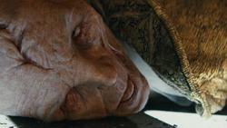 Snoke Corpse