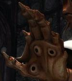 Mão Mon Calamari