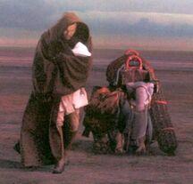 Obi-Wan-Kenobi-obi-wan-kenobi-29218611-400-383