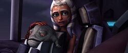 Ahsoka and stinky