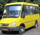 Рута, автобуси