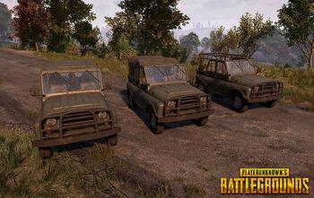 Playerunknown's Battlegrounds (11)