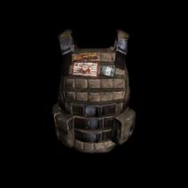 Icon Vest-3