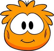 Orange puffle suit