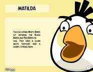 1000px-Matilda Toy Care