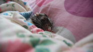 Cutest-Rats-44