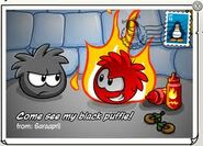 Black Puffle postcard