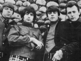The Standells