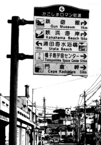 Kagoshima-t c130p4