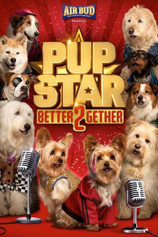 File:Pup-star-2.jpg