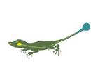 Medicine Lizard