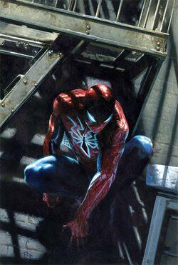 Peter Parker Spidey