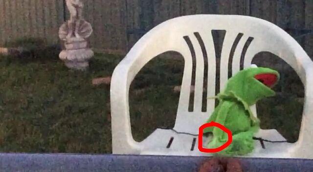 File:Kermit Rainbow Goof.jpg