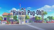 Hawaii Pug-Oh title card