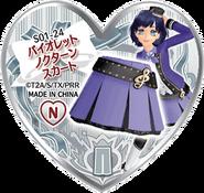 Violet Nocturne Skirt