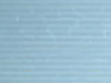 Winter White Session