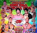 Kobe World Pro Wrestling Festival (2014)