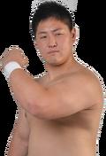 HideyoshiKamitani
