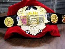 IGF Championship