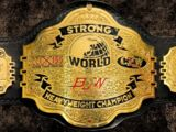 BJW World Strong Heavyweight Championship
