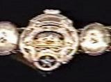 """Real"" Pro Wrestling World Heavyweight Championship"