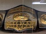 PWF United States Heavyweight Championship