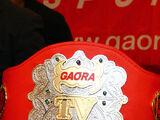 Gaora TV Championship