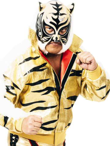 File:TigerMask.png
