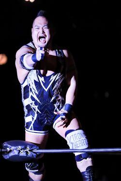 Shigehiro Irie