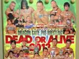 Dead or Alive (2013)