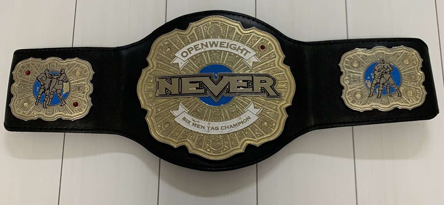 Image result for NEVER Openweight Tag Team Championships
