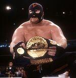 Big Van Vader IWGP