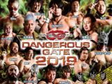 Dangerous Gate (2019)