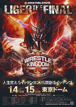 Wrestle Kingdom 14 poster