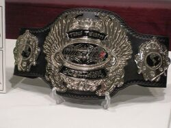 Wrestle-1tagchampionship