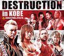Destruction (2018)