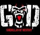 Guerrillas of Destiny