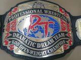 KO-D Openweight Championship