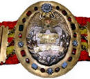 All Asia Heavyweight Championship
