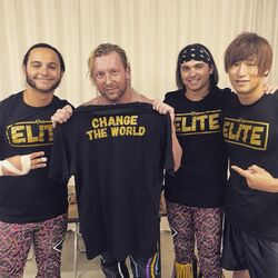 Golden elite2