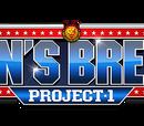 Lion's Break Project
