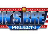 Lion's Break Project
