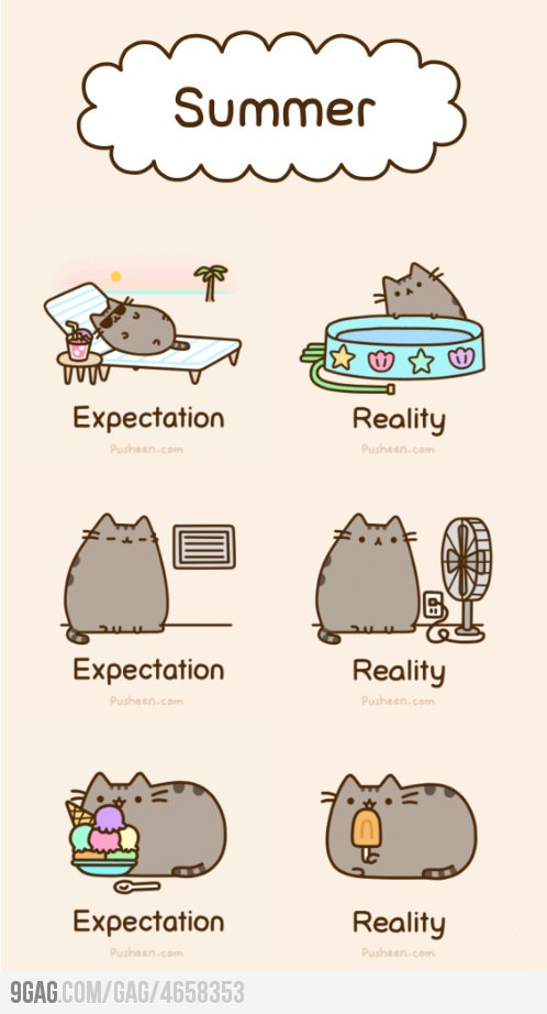 Pusheen S Guide To Summer By Snippydinosaur D57bdyw