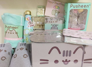 Pusheen box Contents