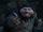 Mole King
