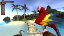 Captain hook&parrot
